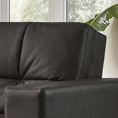 Spartan Convertible Sofa Upholstery: Java