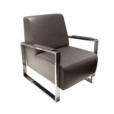 Olney Arm Chair Color: Elephant Grey