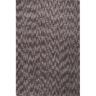 Alderamin Gray / Brown Shag Area Rug Rug Size: 4 x 6