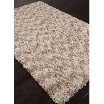 Alderamin Shag Ivory/Taupe Area Rug Rug Size: 4 x 6