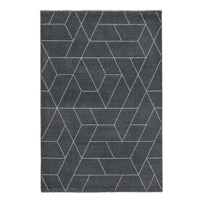 Elysian Charcoal Gray/Paloma Area Rug Rug Size: 2 x 311