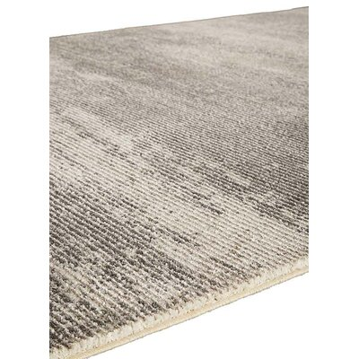 Brigette Charcoal Gray/Paloma Area Rug Rug Size: Rectangle 53 x 76