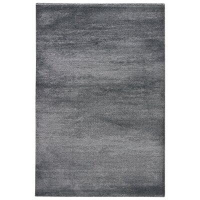 Brigette Solid Charcoal Gray/Paloma Area Rug Rug Size: Rectangle 710 x 96