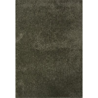 Brys Polyester Shag Forest Shade Area Rug Rug Size: 5 x 76