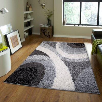 Fabian Black/Gray Area Rug Rug Size: 49 x 66