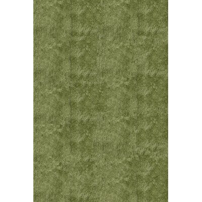 Cherree Hand-Tufted Apple Green Area Rug Rug Size: Rectangle 8 x 10