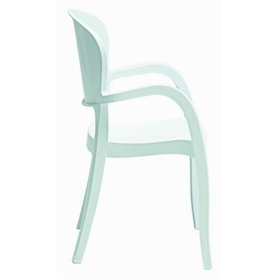 Aniyah Arm Chair Finish: White