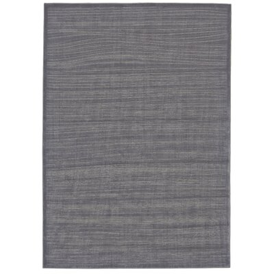 Charlotta Sterling/White Area Rug Rug Size: Rectangle 8 x 11