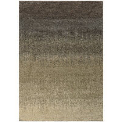 Lyla Gray/Beige Area Rug Rug Size: Rectangle 6'7