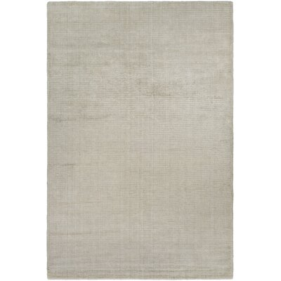 Chipley Hand-Loomed Gray Area Rug Rug Size: 35 x 55