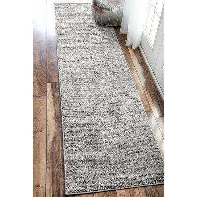 Bismark Gray Area Rug Rug Size: Runner 26 x 12