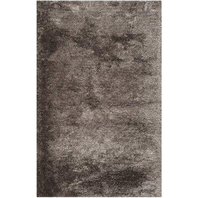 Anna Latte Shag Rug Rug Size: 5 x 8