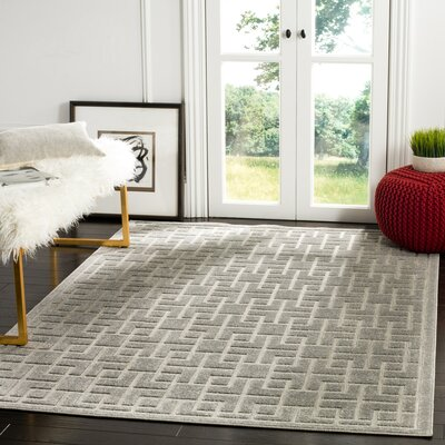 Cruz Gray Indoor/Outdoor Area Rug Rug Size: 53 x 77