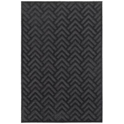 Fenella Black/Gray Area Rug Rug Size: Rectangle 310 x 54