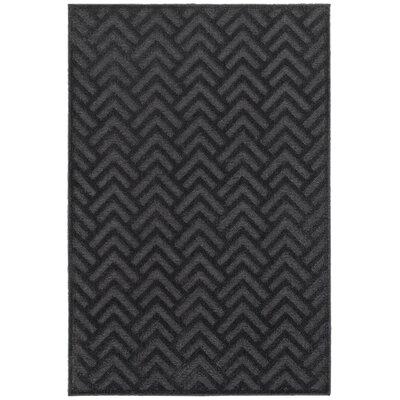 Fenella Black/Gray Area Rug Rug Size: 310 x 54