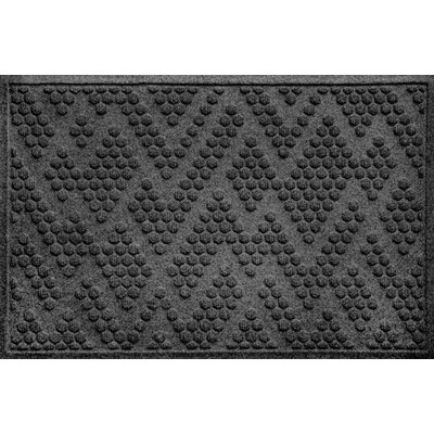 Mendez Doormat Color: Charcoal