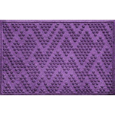 Ilana Katy Doormat Color: Purple