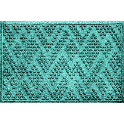 Mendez Doormat Color: Aquamarine