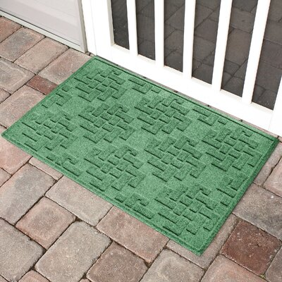 Mendez Rectangle Doormat Color: Light Green