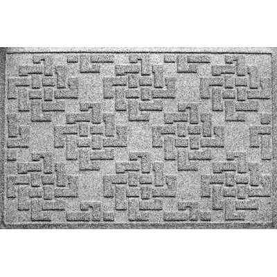 Mendez Rectangle Doormat Color: Medium Grey
