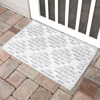 Mendez Rectangle Doormat Color: White