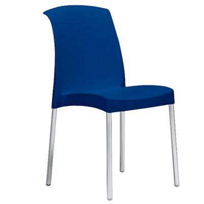 Bayonne Side Chair Finish: Blue