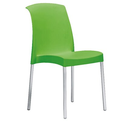 Bayonne Side Chair Finish: Green