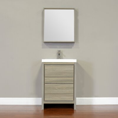 Waldwick 24 Single Modern Bathroom Vanity Set with Mirror Finish: Gray