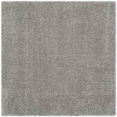 Jonathan Shag Silver Area Rug Rug Size: Square 5'3
