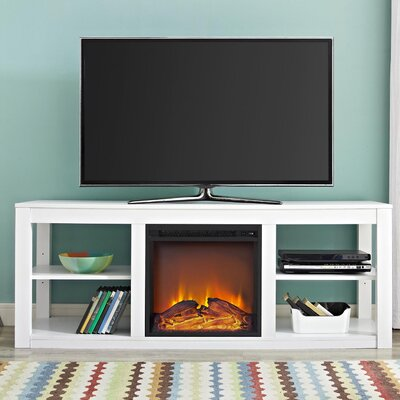 Rickard 59 TV Stand with Fireplace Finish: White