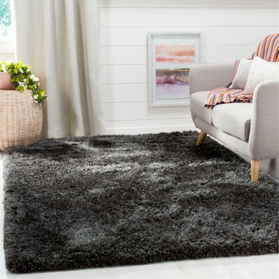 Page Dark Gray Shag Area Rug Rug Size: Rectangle 5 x 8