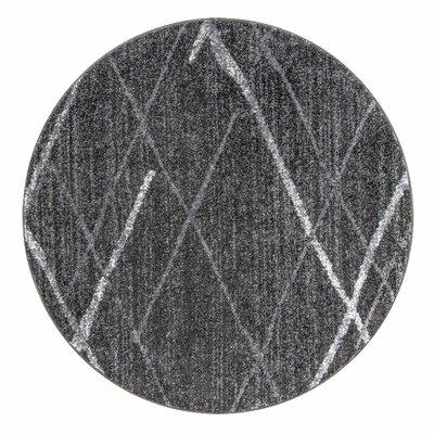 Mcphee Gray Area Rug Rug Size: Round 5