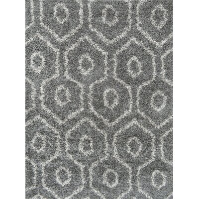 Lola Dark Gray Area Rug Rug Size: Rectangle 53 x 76