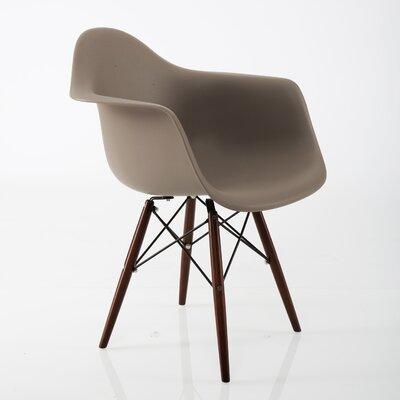 Junia Arm Chair Finish: Gray