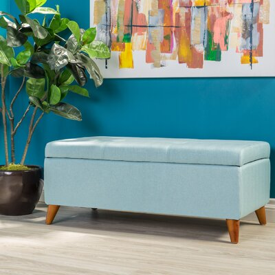 Goldwin Storage Ottoman Finish: Light Blue
