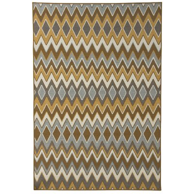 Finsbury Gray/Brown Indoor/Outdoor Area Rug Rug Size: 53 x 76