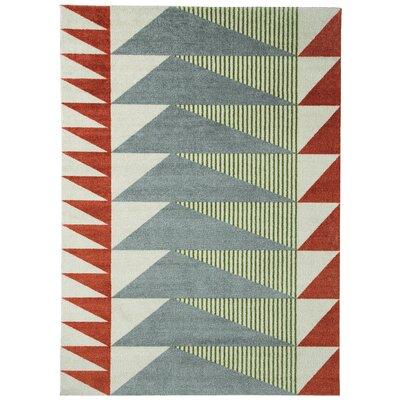 Bernadette Tabasco/Gray Area Rug Rug Size: 76 x 96