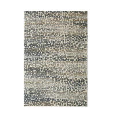 Canning Gray Area Rug Rug Size: Rectangle 53 x 710