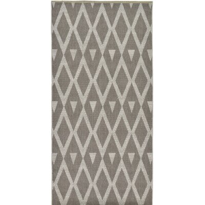 Adelphi Dark Gray Outdoor Area Rug Rug Size: Runner 4 x 82