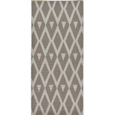 Adelphi Dark Gray Outdoor Area Rug Rug Size: Runner 5 x 82