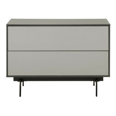 Tasha 31.5 TV Stand Color: Matte Gray/Matte Light Gray