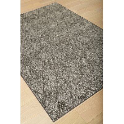 Becker Charcoal/Silver Area Rug Rug Size: 53 x 76