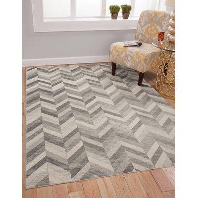 Becker Silver/Gray Area Rug Rug Size: 53 x 76