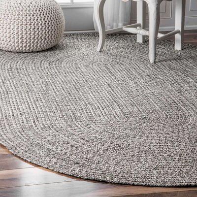 Canton Salt/Pepper Indoor/Outdoor Area Rug Rug Size: Oval 4 x 6