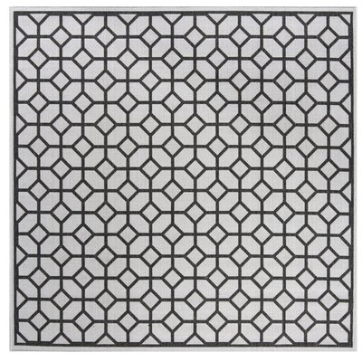 Kelli Light Gray Area Rug Rug Size: Square 67