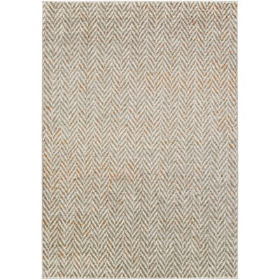 Burroughs Light Gray/Burnt Orange Area Rug Rug Size: Rectangle 76 x 106