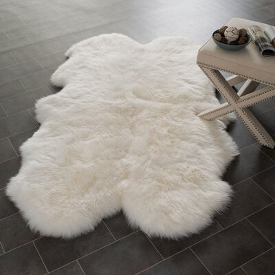 Allison White Area Rug Rug Size: Novelty 4 x 6