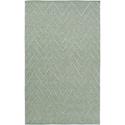 Saragossa Hand-Woven Green Area Rug Rug Size: Rectangle 2 x 3
