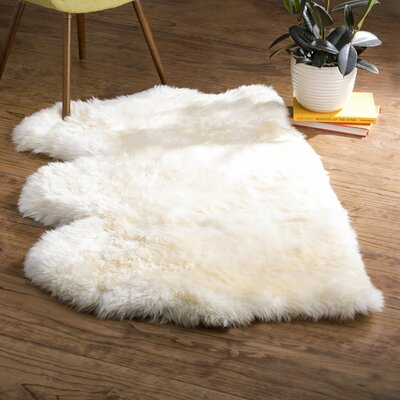 Allison White Area Rug Rug Size: Novelty 3 x 5