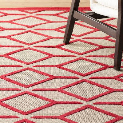 Taschen Red Indoor/Outdoor Area Rug Rug Size: Rectangle 53 x 75